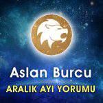 Aslan Burcu Aralık 2016 Yorumu