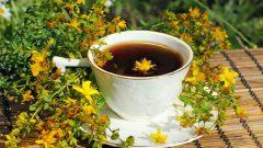 Sarı Kantaron Çayının Faydaları