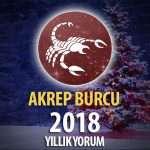 Akrep Burcu 2018 Yorumu