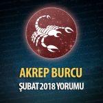 Akrep Burcu Şubat 2018 Yorumu