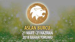 Aslan Burcu 2018 Bahar Yorumu