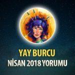 Yay Burcu Nisan 2018 Yorumu
