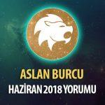 Aslan Burcu Haziran 2018 Yorumu