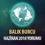 Balık Burcu Haziran 2018 Yorumu