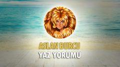 Aslan Burcu 2018 Yaz Yorumu