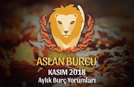 Aslan Burcu Kasım 2018 Yorumu