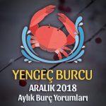 Yengeç Burcu Aralık 2018 Yorumu