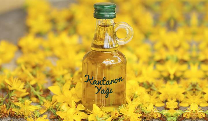 Sarı kantaron bitkisinin kullanımı ile Etiketlenen Konular