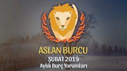 Aslan Burcu Şubat 2019 Yorumu
