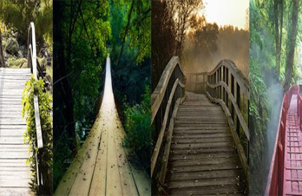 Hangi Köprüden Geçmeyi Tercih Edersiniz ?