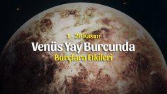 Venüs Yay Burcunda 1 – 26 Kasım 2019