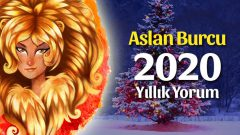 Aslan Burcu 2020 Yıllık Yorumu
