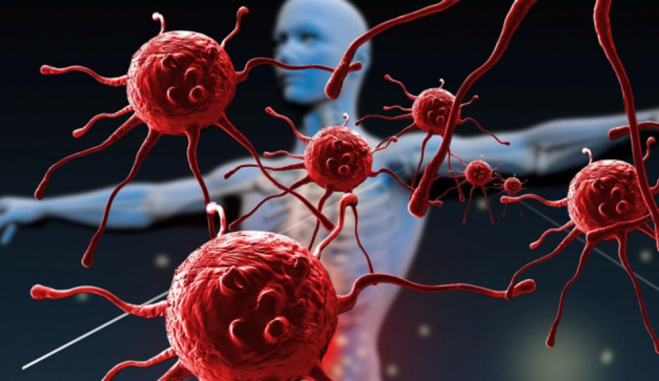 Bağışıklık Sistemi Zayıfladığının Belirtileri