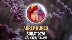 Akrep Burcu Şubat 2020 Yorumu