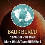 Balık Burcu Mars Oğlak Transiti Etkileri
