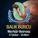 Balık Burcu Merkür Retrosu Etkileri 17 Şubat - 10 Mart 2020