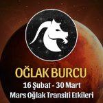 Oğlak Burcu Mars Oğlak Transiti Etkileri