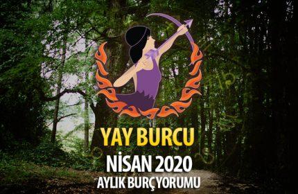 Yay Burcu Nisan 2020 Yorumu