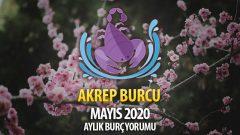 Akrep Burcu Mayıs 2020 Yorumu