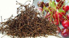 Kiraz Sapı Çayının Faydaları