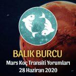 Balık Burcu Mars Transiti Burç Yorumları