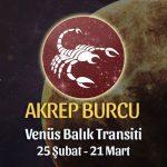 Akrep Burcu - Venüs Balık Transiti Yorumları