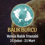 Balık Burcu - Venüs Balık Transiti Yorumları