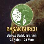 Başak Burcu - Venüs Balık Transiti Yorumları