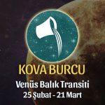 Kova Burcu - Venüs Balık Transiti Yorumları