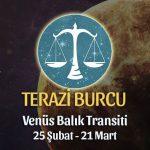 Terazi Burcu - Venüs Balık Transiti Yorumları