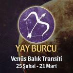 Yay Burcu - Venüs Balık Transiti Yorumları