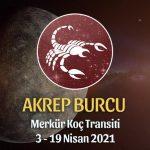 Akrep Burcu - Merkür Koç Transiti Yorumu