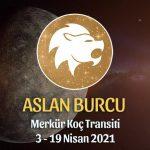 Aslan Burcu - Merkür Koç Transiti Yorumu