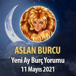 Aslan Burcu - Yeni Ay Burç Yorumu 11 Mayıs 2021