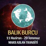 Balık Burcu - Mars Aslan Transiti Yorumu