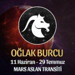 Oğlak Burcu - Mars Aslan Transiti Yorumu